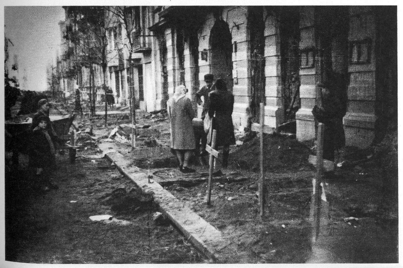 26-ekshumacja-zwok-z-ulicznych-mogi.png