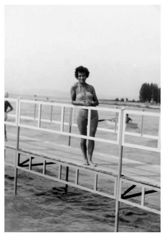 kenese-1964-6.png